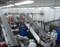 Роликовые конвейеры для транспортировки пищевых продуктов в контейнерах